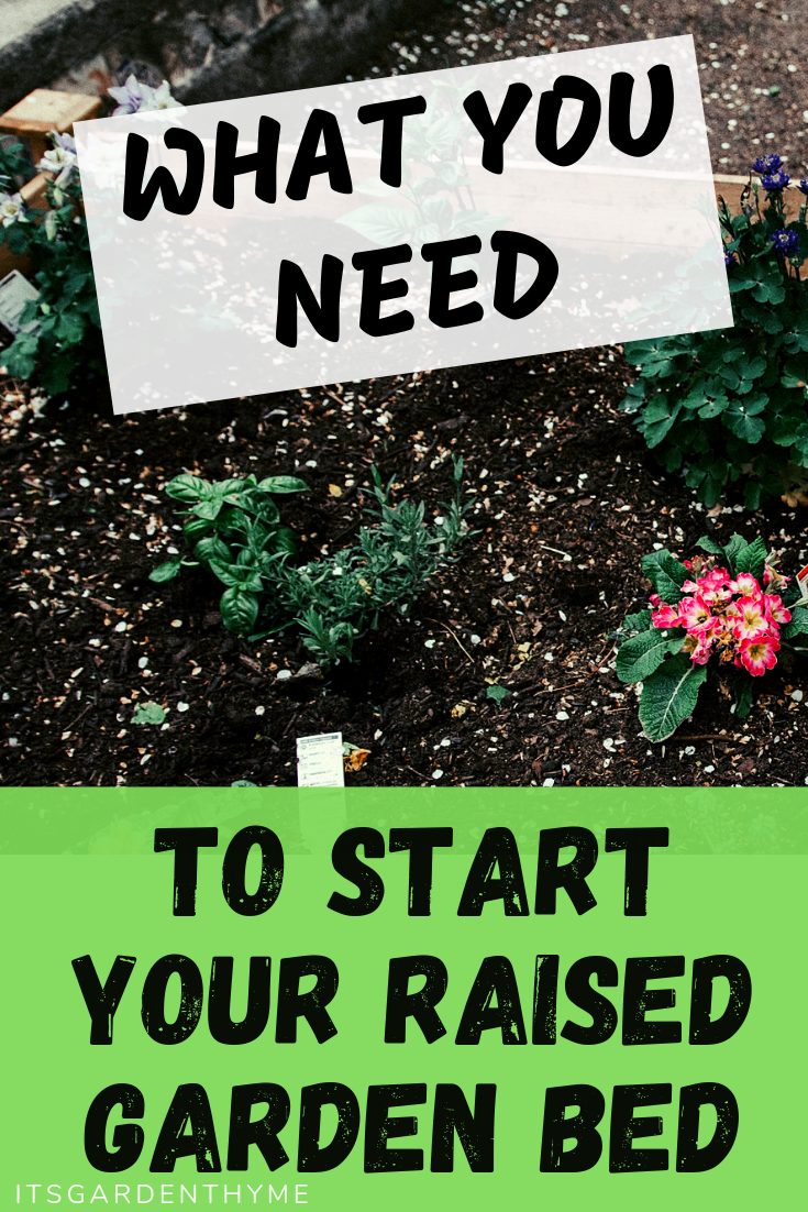 how to start raised garden bed