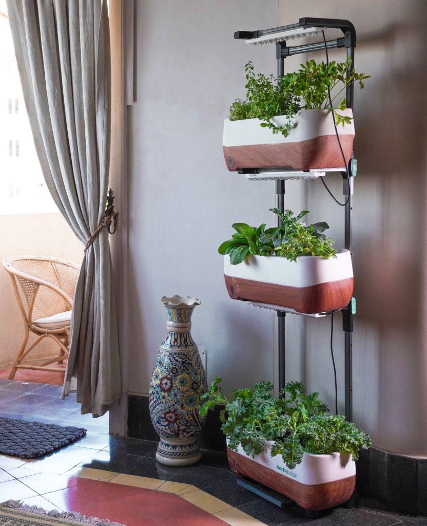Benefits Of Vertical Gardening